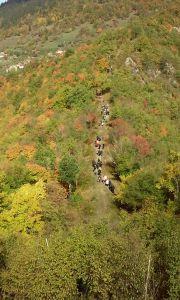 TDK 2015 - Tropletovi Izvidnici na Molitvenom pohodu za Domovinu na Bobovac