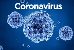 koronavirus-dnevno-foto