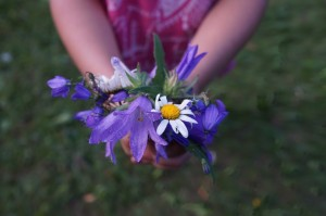 flowers-871499_1280